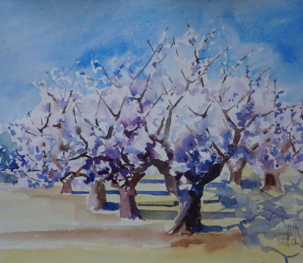 Les cerisiers 30×40 aquarelel